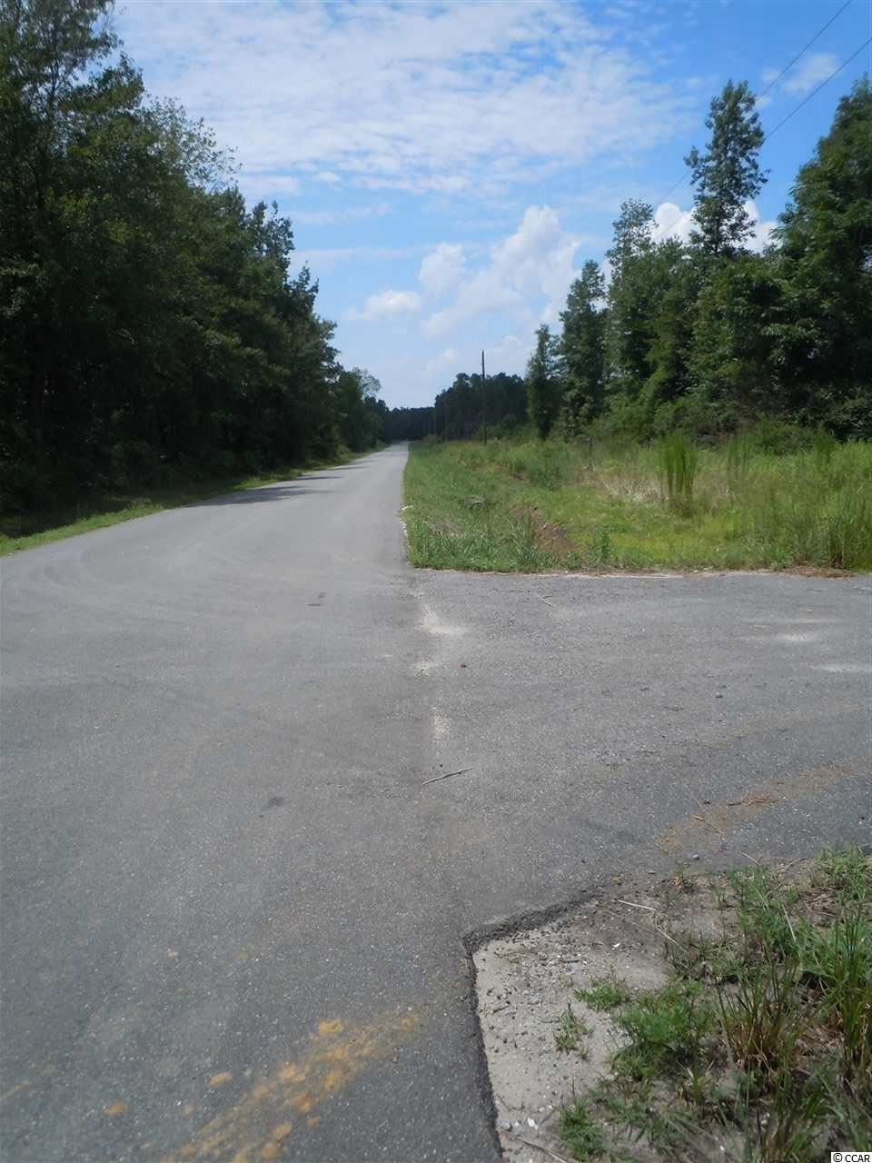 TBD Bertie Rd., Green Sea, SC, 29545, Not within a Subdivision Home For Sale