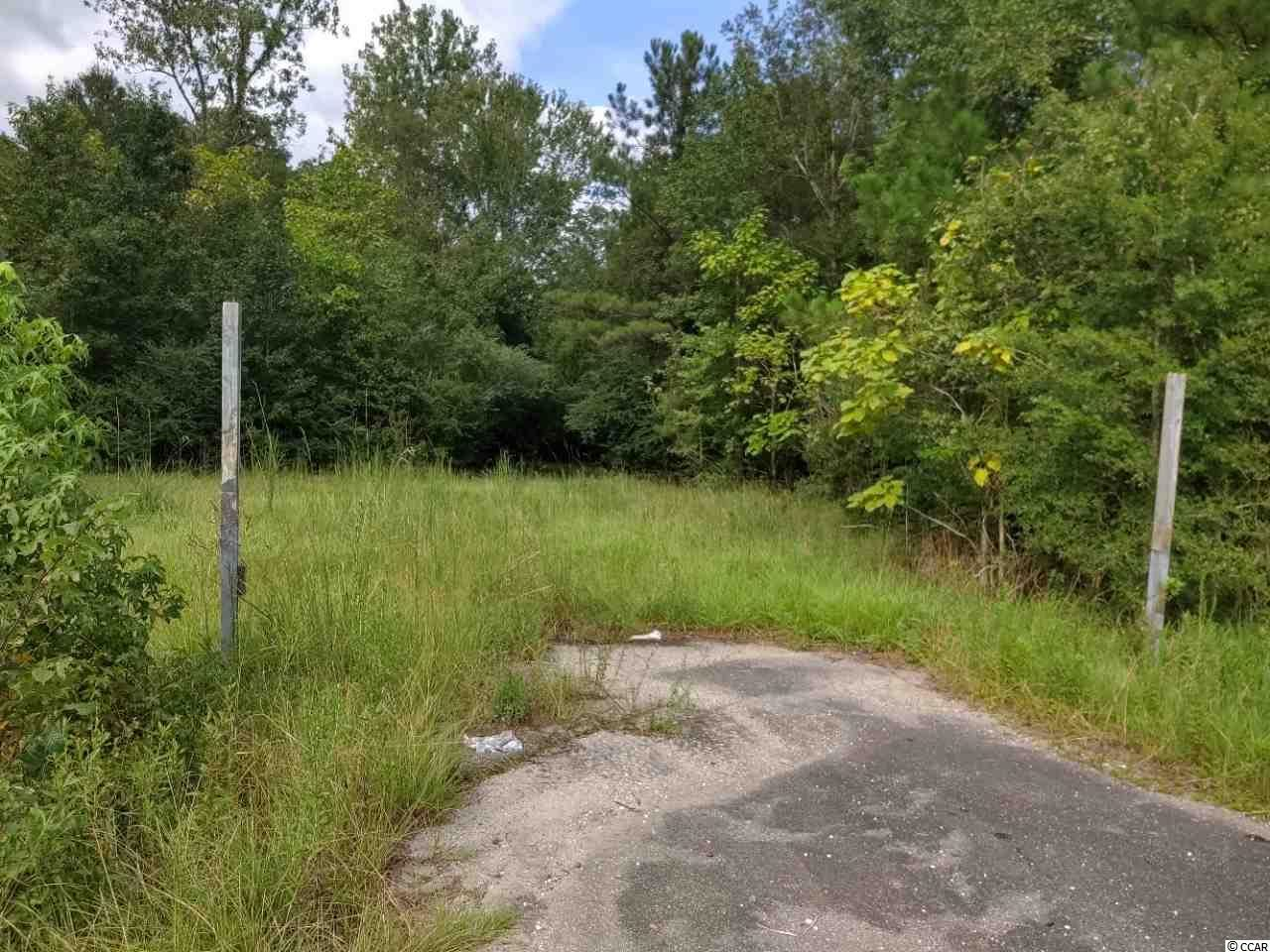 2504 Georgetown Hwy., Andrews, SC, 29510, Not within a Subdivision Home For Sale