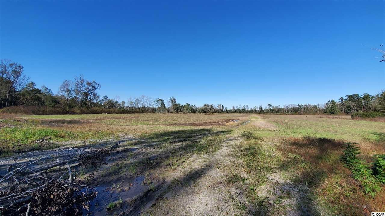 TBD 38ac Sea Breeze Dr., Green Sea, SC, 29545, Not within a Subdivision Home For Sale