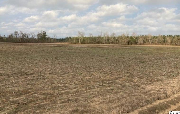 1760 Sandy Land Rd., Marion, SC, 29571, Not within a Subdivision Home For Sale