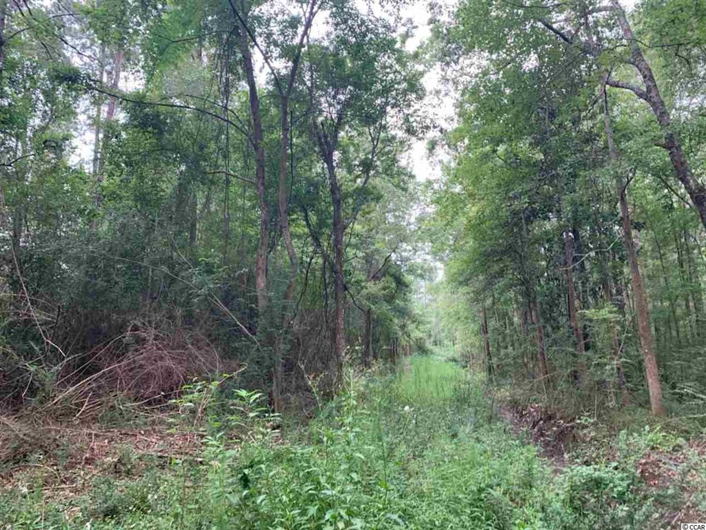 45.3 acre Old Cemetary Rd., Andrews, SC, 29510, Not within a Subdivision Home For Sale