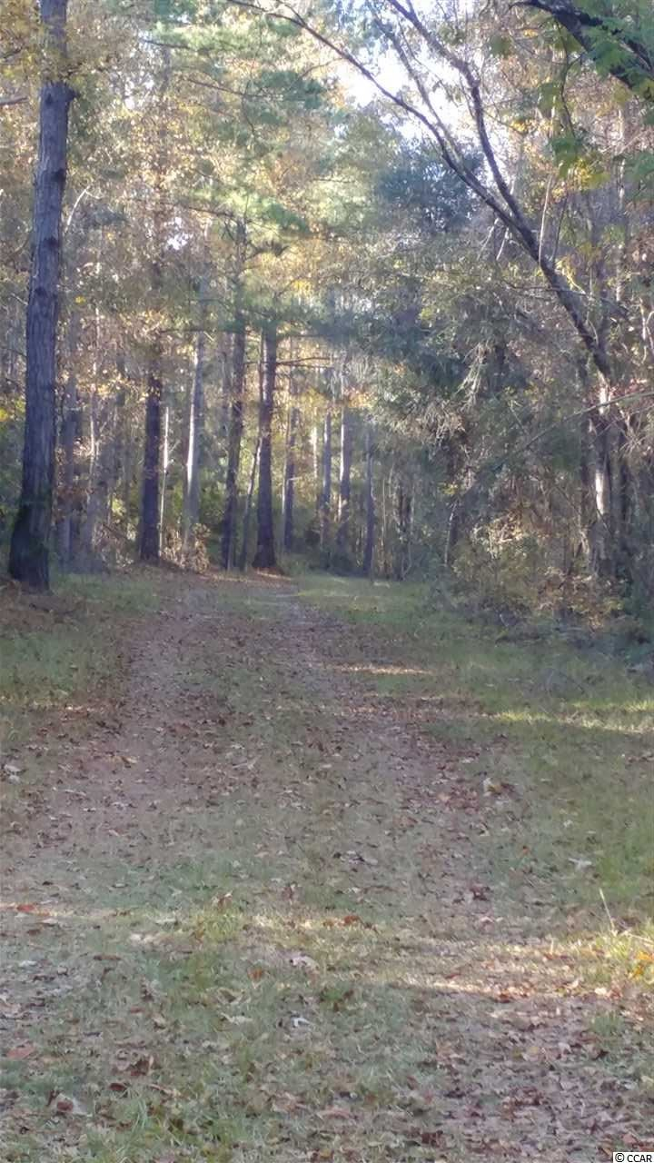 2556 Nesmith Rd., Nesmith, SC, 29580, Not within a Subdivision Home For Sale