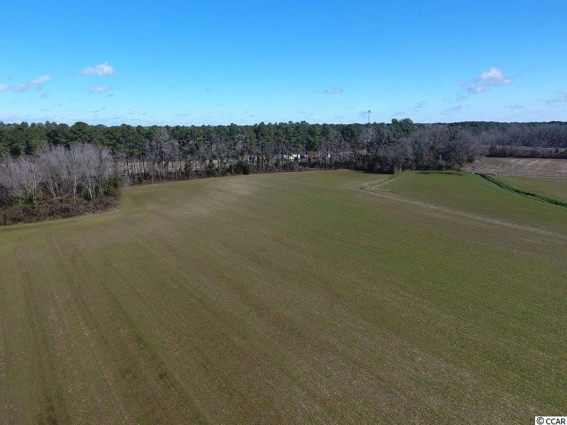 0 Stack Turner Rd., Chadbourn, NC, 28431, Not within a Subdivision Home For Sale