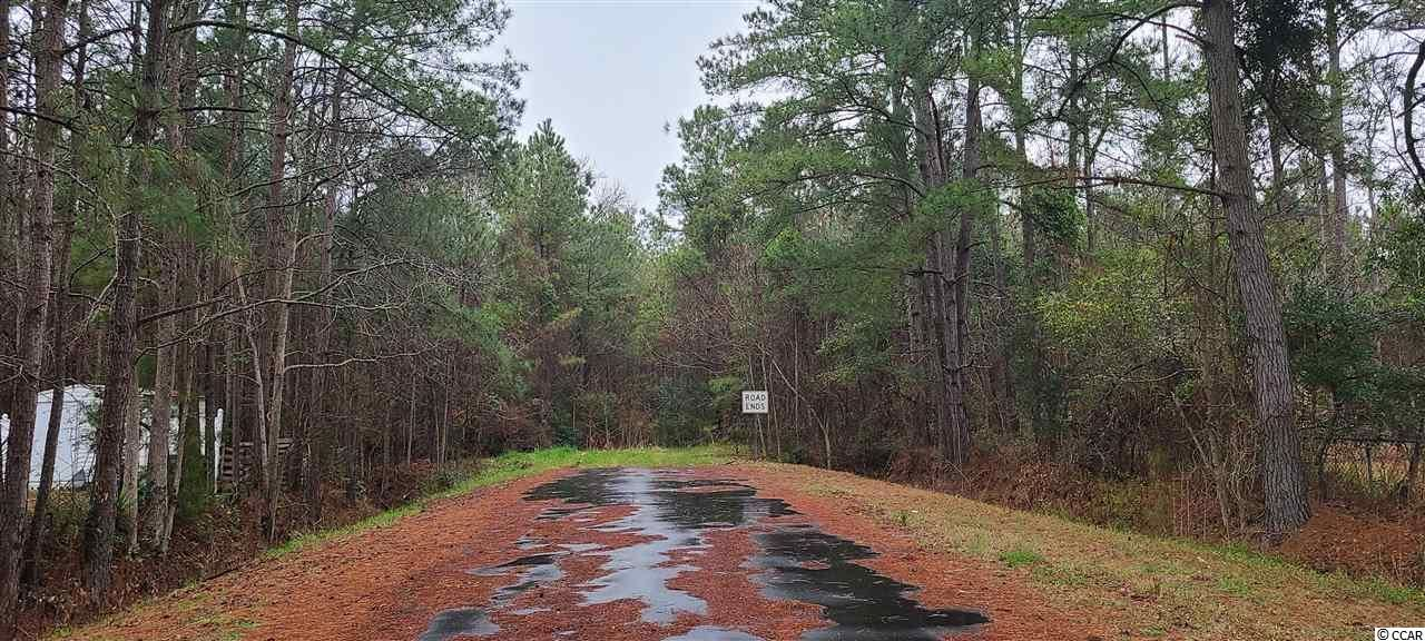 TBD Nelson Rd., Little River, SC, 29566, Not within a Subdivision Home For Sale