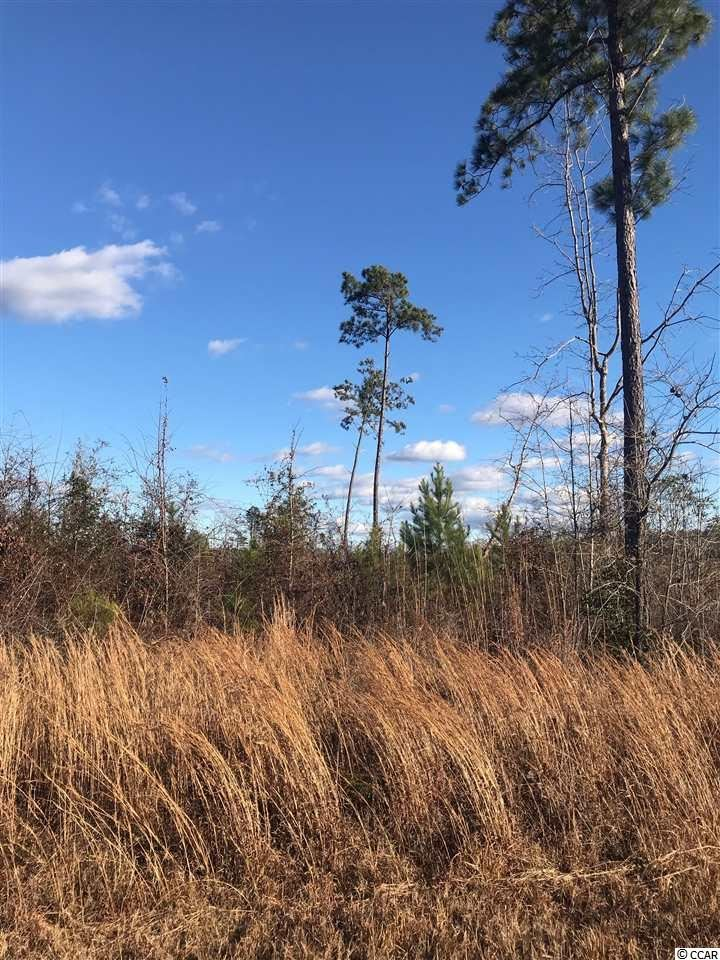 TBD Locklear Ln., Salters, SC, 29590, Not within a Subdivision Home For Sale