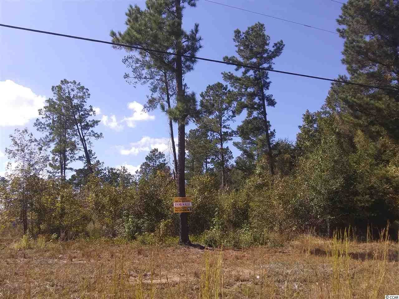 0 Highway 501, Latta, SC, 29565, Not within a Subdivision Home For Sale