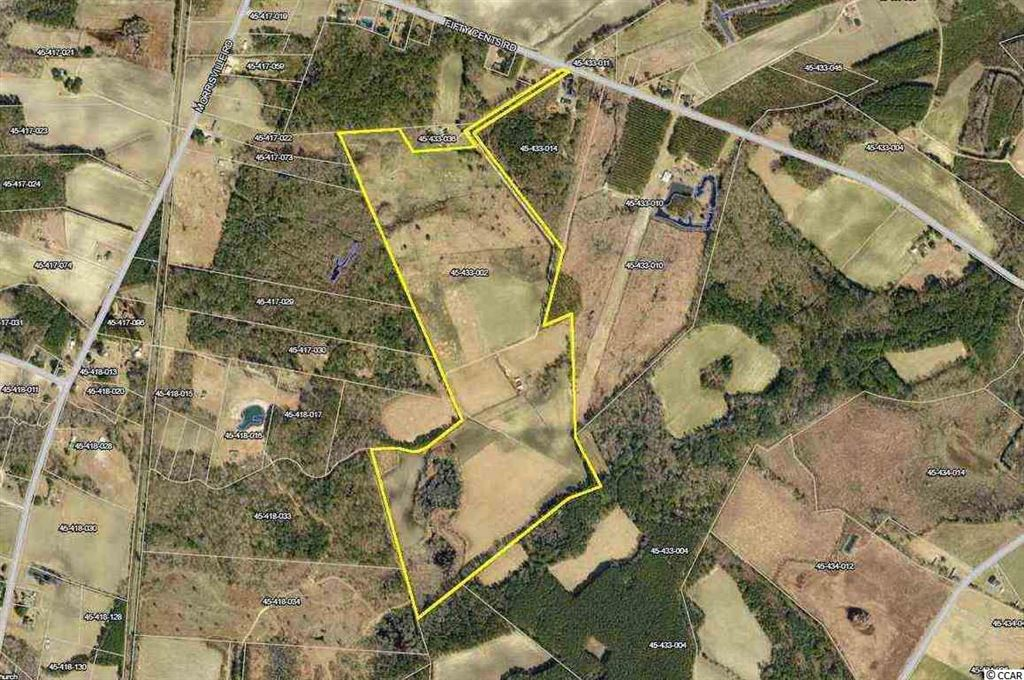 471 Fifty Cents Rd., Andrews, SC, 29510, Not within a Subdivision Home For Sale