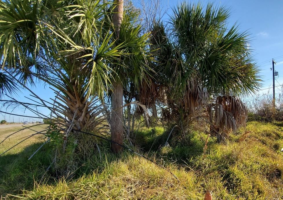 Photo for 3810 Hwy 35 S, Rockport, TX 78382 (MLS # 376730)