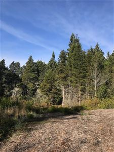 Photo of 43187 Caspar Little Lake Road, Mendocino, CA 95460 (MLS # 27150)
