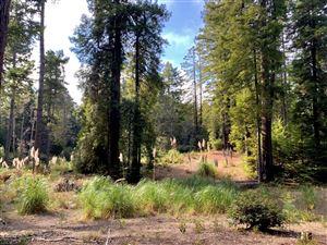 Photo of 18830 Dwyer Lane, Fort Bragg, CA 95437 (MLS # 27169)