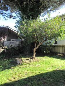 Photo of 445 1/2 N Whipple Street, Fort Bragg, CA 95437 (MLS # 26257)