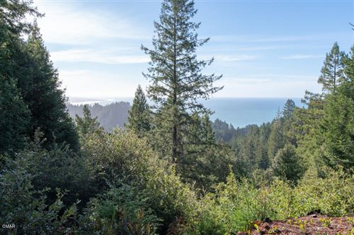 Photo of 31800 Bruhel Point Road, Westport, CA 95488 (MLS # 27362)
