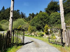 Photo of 29100 Camp 2 10 Mile Road, Fort Bragg, CA 95437 (MLS # 26738)