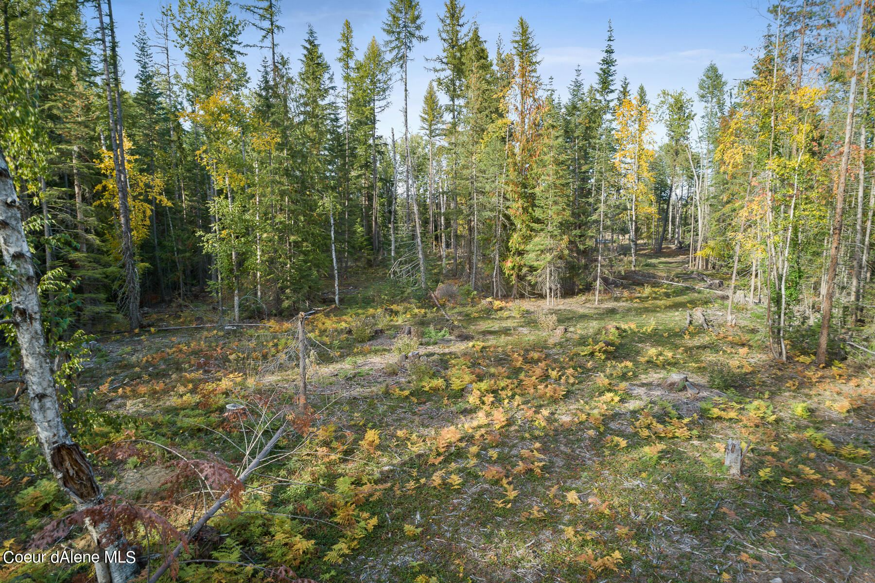 Photo of NNA Center Valley Road, Sandpoint, ID 83864 (MLS # 21-10362)