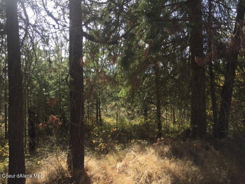 Photo of NKA Roberts Ln, Blanchard, ID 83804 (MLS # 21-10718)