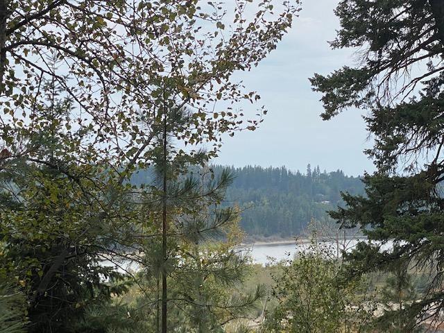 Photo of 897 & 919 Diamond Hgts Rd., Oldtown, ID 83822 (MLS # 20-9752)
