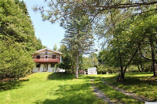 Photo of 47 Cherokee Drive, Copake, NY 12516 (MLS # 138743)