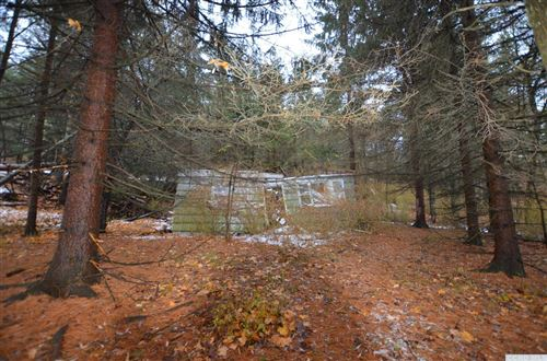 Photo of 6035 Route 81, Greenville, NY 12083 (MLS # 136860)