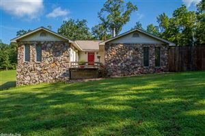 Photo of 16500 Sunbelt Lane, Little Rock, AR 72206 (MLS # 19023661)