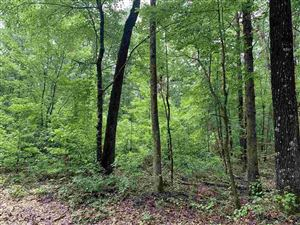 Photo for Blk 5- lots5-7, Cherokee, White Hall, AR 71602 (MLS # 19018704)