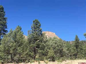 Photo of (LOT 28) 106 WOOD ROSE Lane, Durango, CO 81301 (MLS # 751009)