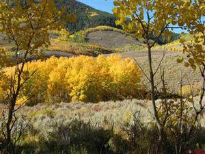 Photo of 301 Wild Rose Lane, Almont, CO 81210 (MLS # 764010)