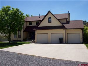Photo of 801 Willow Wood Lane, Delta, CO 81416 (MLS # 756014)