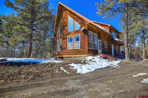 Photo of 160 Big Horn Court, Pagosa Springs, CO 81147 (MLS # 779015)