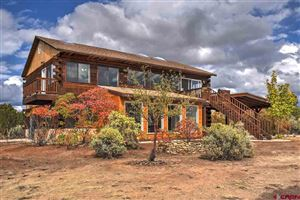 Photo of 12095 Road 32, Mancos, CO 81328 (MLS # 757017)