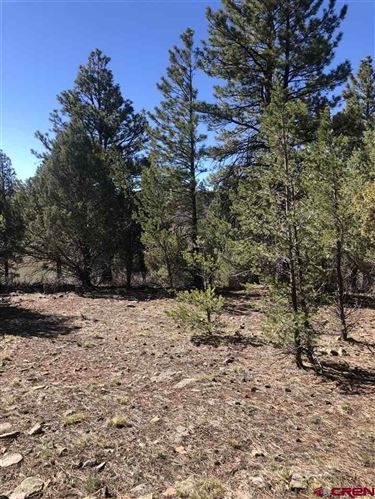 Photo of TBD Lot 237 Gopher Court, Ridgway, CO 81432 (MLS # 782018)