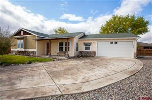 Photo of 2308 Tate Court, Montrose, CO 81401 (MLS # 764024)