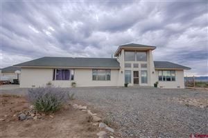 Photo of 18800 Dave Wood Road, Montrose, CO 81403 (MLS # 750029)