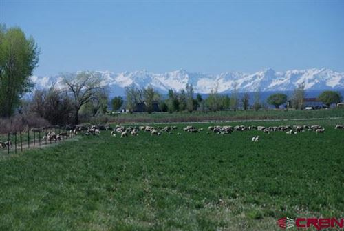 Photo of 66527 Ogden Road, Montrose, CO 81401 (MLS # 756029)