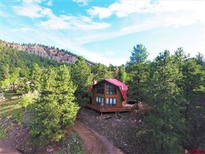 Photo of 1110 Ocean Wave Drive, Lake City, CO 81235 (MLS # 762030)