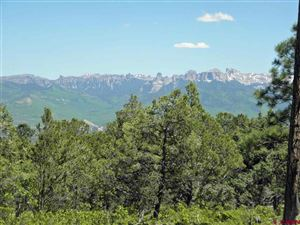 Photo of TBD Juniper Road N Road, Ridgway, CO 81432 (MLS # 749037)