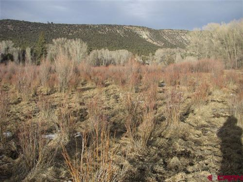 Photo of tbd County Road 24, Ridgway, CO 81432 (MLS # 773049)