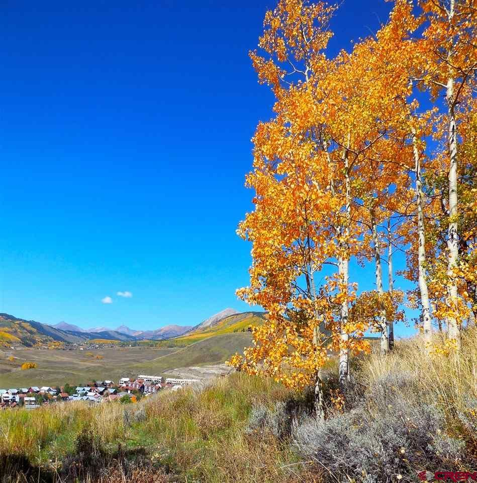 Photo of 46 Hunter Hill Road, Mt. Crested Butte, CO 81225 (MLS # 775055)