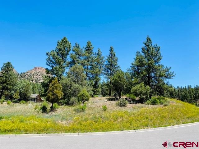 Photo for 80 Wood Rose Lane, Durango, CO 81301 (MLS # 771062)