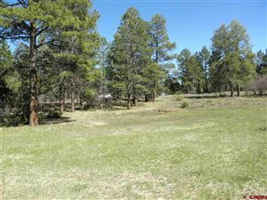 Photo of TBD S Badger Trail, Ridgway, CO 81432 (MLS # 731067)