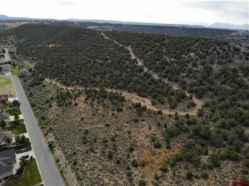 Photo of TBD TBD Road, Cedaredge, CO 81413 (MLS # 773074)
