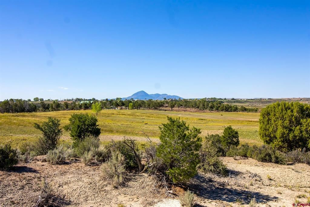 Photo for TBD Highway 491, Lewis, CO 81327 (MLS # 765083)