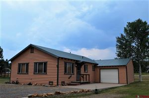 Photo of 21 N Stymie Court, Pagosa Springs, CO 81147 (MLS # 759088)