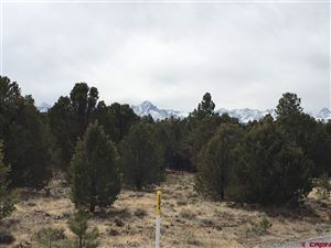 Photo of 215 Fisher Canyon South, Ridgway, CO 81432 (MLS # 743089)