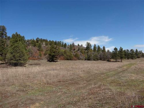 Photo of X County Road 500, Pagosa Springs, CO 81147 (MLS # 781095)