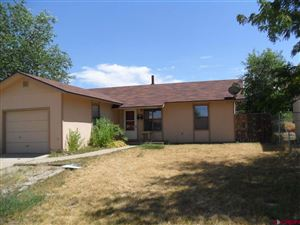 Photo of 935 Brookside Drive, Cortez, CO 81321 (MLS # 762109)
