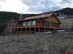 Photo of 597 Aqwisic Drive, Creede, CO 81130 (MLS # 744116)