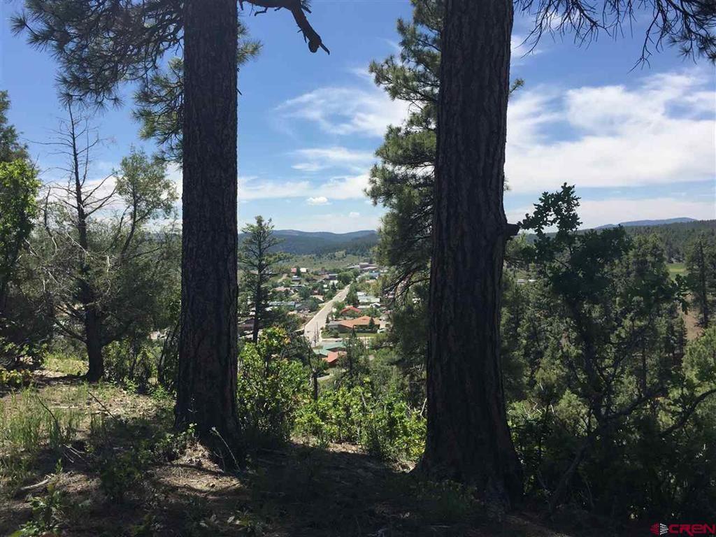 Photo of X Berwyn Street, Pagosa Springs, CO 81147 (MLS # 788120)