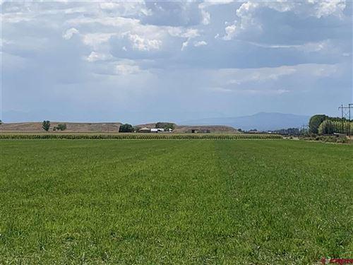 Photo of 62676 Ida Road, Montrose, CO 81401 (MLS # 765132)