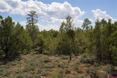 Photo of ToBeDetermined County Road P2, Mancos, CO 81328 (MLS # 751134)