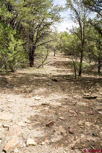 Tiny photo for TBD Road P.2, Mancos, CO 81328 (MLS # 751134)